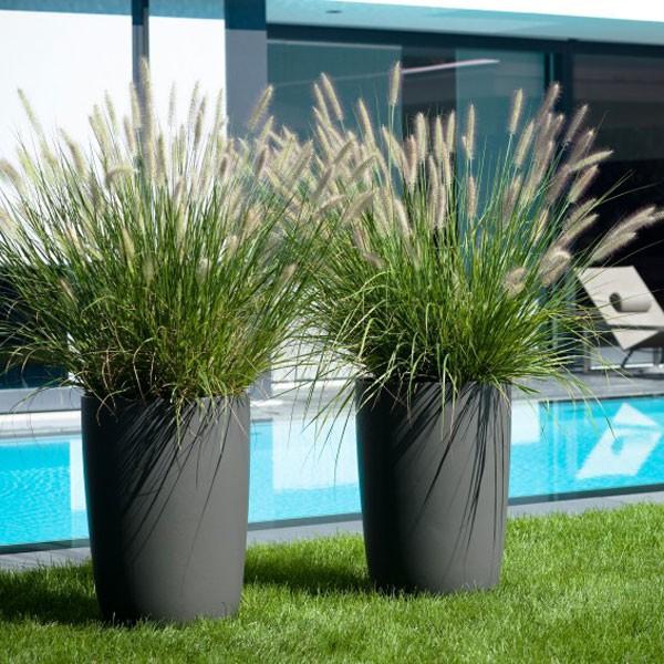 Int grer la piscine au jardin id es piscine for Piscine jardin de la republique